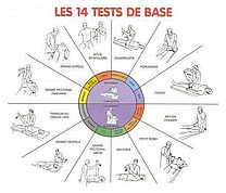 14-tests-base-kinesiologie-1